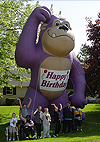Outdoor Advertising Balloons, Chicago Balloons